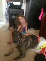 lilly & Lacy photo 2.JPG