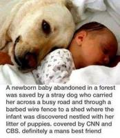heart warming...jpg