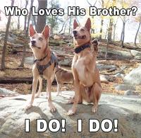 Nakoma-and-brother-Meme.png