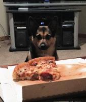 pizzalili.jpg